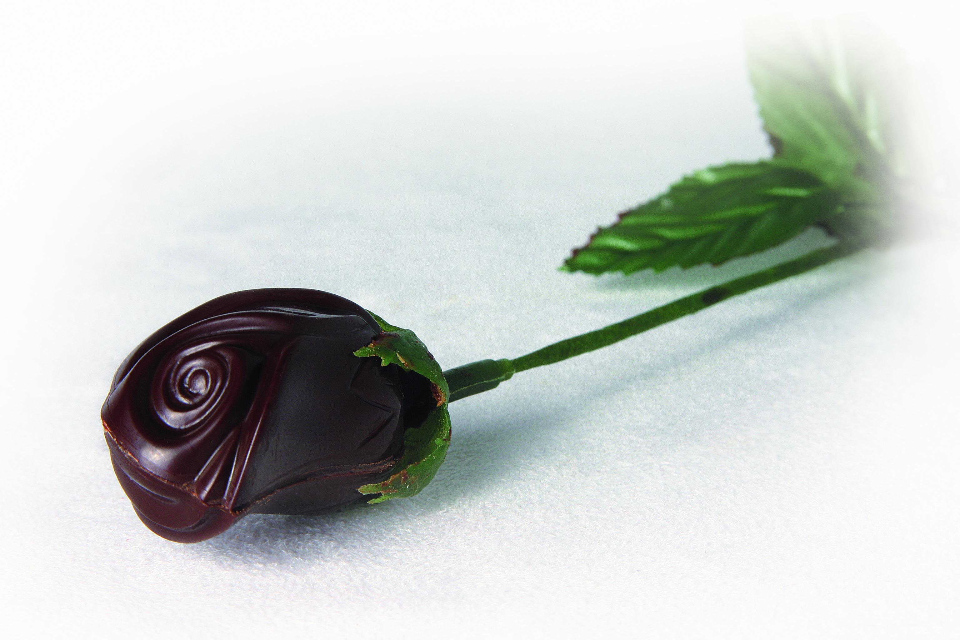 Rose en chocolat Fondant